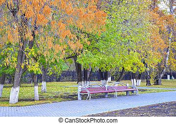automne, park., bancs