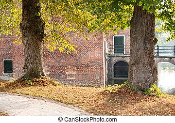 automne, pays-bas, parc, feuilles, ensoleillé, arbres, day., automne, château