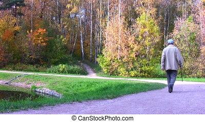 automne, personne agee, parc, marche