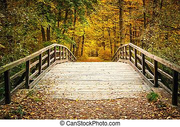 automne, pont, forêt