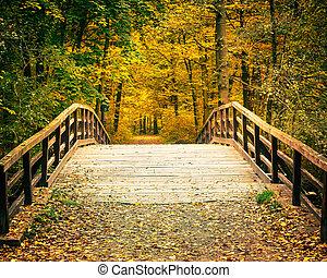 automne, pont, parc