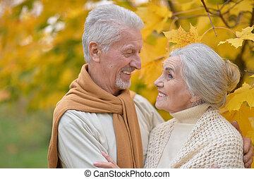 automne, portrait, couple, parc, personne agee