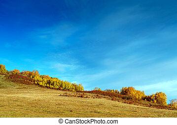 automne, prairies, intérieur, mongolie