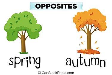 automne, printemps, mots, opposé