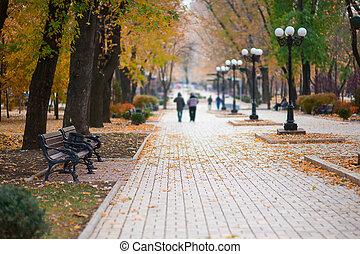 automne, promenade, parc, gens