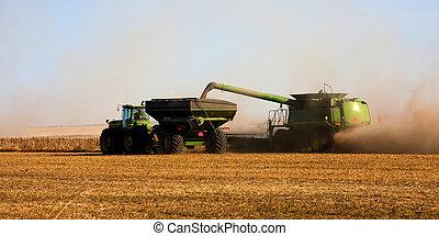 automne, récolte, prairies