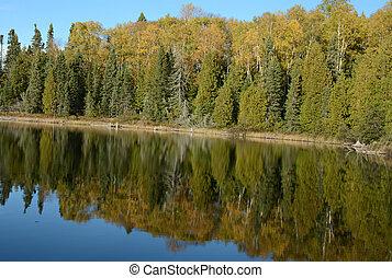 automne, réflexions, -, minnesota, lac