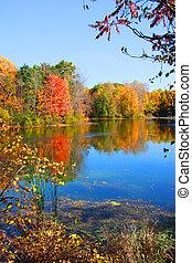 automne, réflexions
