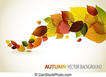 automne, résumé, floral, fond