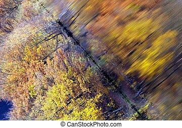 automne, résumé, lac, perspective