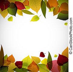 automne, résumé, pousse feuilles, fond
