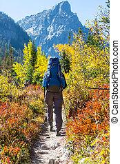 automne, randonnée, saison