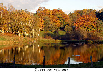 automne, reflections., france., limousin