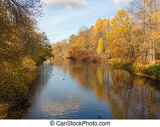 automne, rivière, parc
