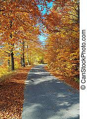 automne, route montagne