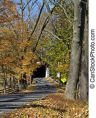 automne, route, pont couvert