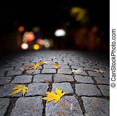automne, rue, feuille, érable, nuit