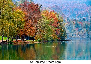 automne, saigné, lac