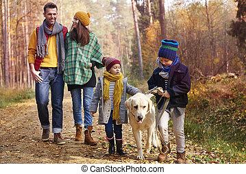 automne, saison, marche, tout, famille