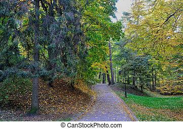 automne, sentier, parc