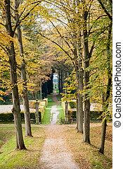 automne, sentier, pays-bas, parc