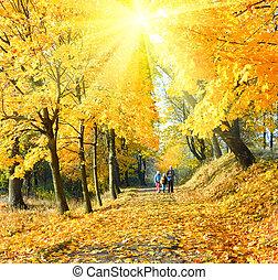automne, soleil, parc, érable, famille