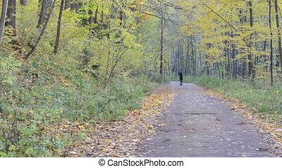 automne, sport, course, route, homme