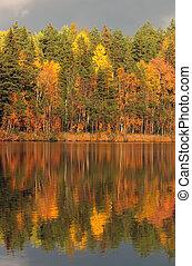 automne, symétrie
