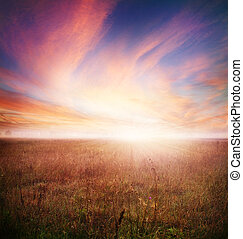 automne, tôt, morning., paysage, matin
