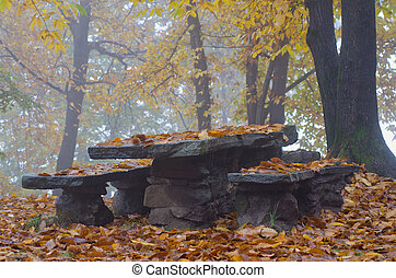 automne, table, bancs