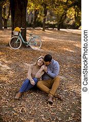 automne, terrestre, séance, jeune, parc, couple