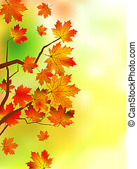automne, très, feuilles, peu profond, foyer.