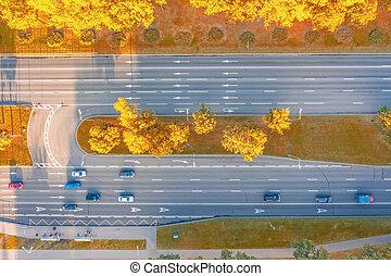 automne, trottoir, cars., autoroute, vue, autour de, visible, arbres, paysage, au-dessus, mouvement, marquages, asphalte, park., ville