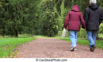 automne, vieux, couple, parc