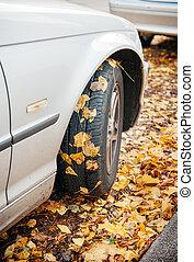 automne, voiture, hiver, pneu