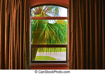automne, vue fenêtre