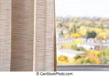 automne, vue, fenêtre