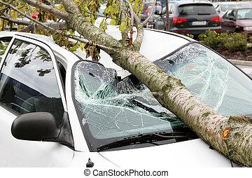 automobile, danneggiato