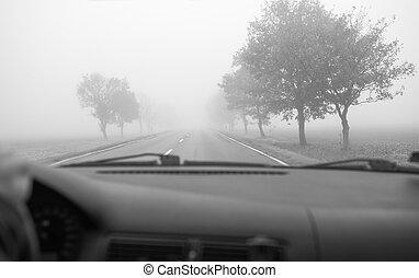 automobile, guida, in, il, nebbia, strada