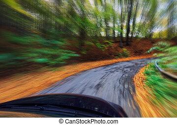 automobile, guidando veloce, in, foresta