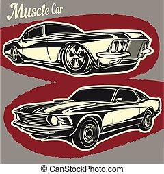 automobile, muscolo