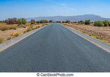 Automobile road in desert