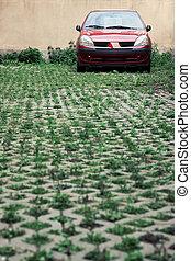 automobile, su, parcheggio