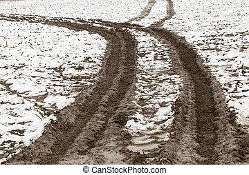 automobile, tracce, neve