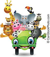 automobile, verde, cartone animato, animale