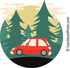 automobile, woods., verde rosso, pino