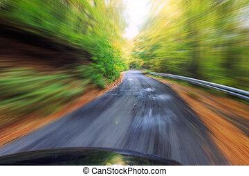 automobilen, drive hurtige, into, skov