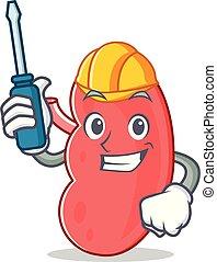 Automotive kidney mascot cartoon style