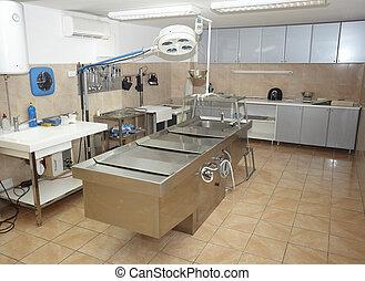 autopsy room medicine healthcare - an autpsy room interior