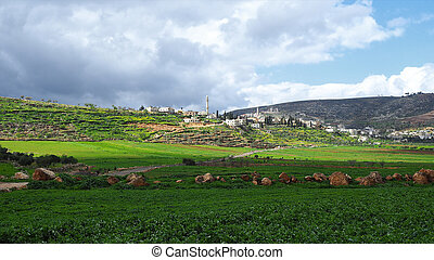 autoridad, palestino